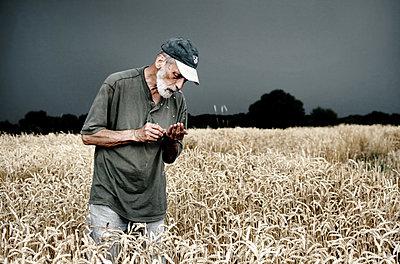 Farmer on field - p1019m2148279 by Stephen Carroll