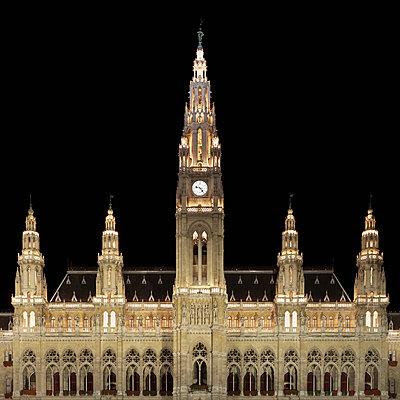 City Hall, Vienna, Austria - p429m801480 by Alex Holland