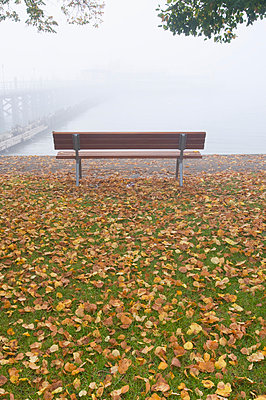 Germany, Hagnau, Lake Constance, Deserted bench and autumn leaves - p300m879330 by Holger Spiering