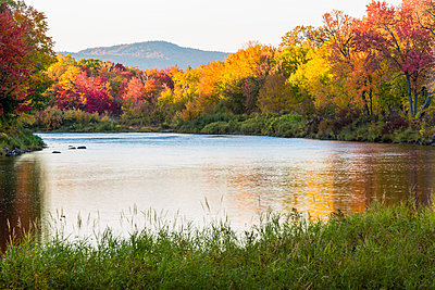 Fall colors line the banks of the East Branch of the Penobscot River. - p1166m2094327 by Cavan Images