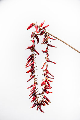 Red Chili Pepper - p248m1132656 by BY