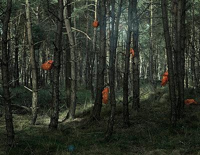 Les Temps Modernes - p1453m1514823 by Alice de Kruijs