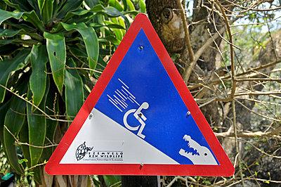 Wheelchair User - p979m910062 by Allgoewer