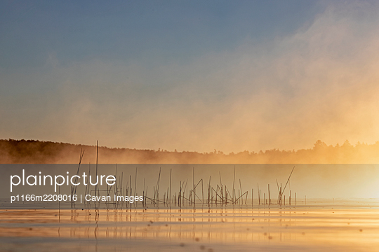 Golden morning mist and fog rises off lake in morning in Maine - p1166m2208016 by Cavan Images