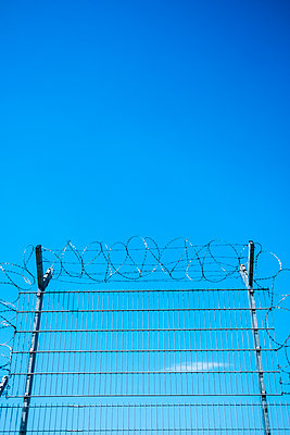 Barbed wire fence - p229m2089461 by Martin Langer
