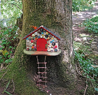 Fairy shelter in Ireland - p162m1220808 by Beate Bussenius