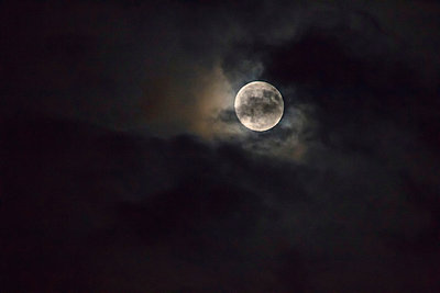 Full moon - p417m912319 by Pat Meise