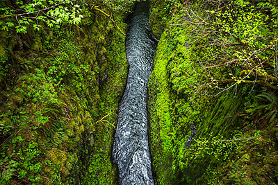 High Angle View Of Creek Running Between Green Moss Covered Area - p343m1218052 by David Hanson