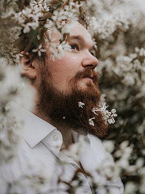 Bearded man in flower bush, portrait - p1507m2278841 by Emma Grann
