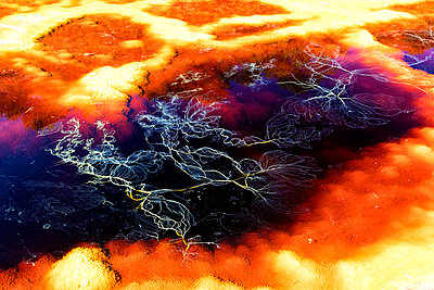 Spain, Andalusia, water of the Rio Tinto, coloured by dissolved minerals, primarily iron - p300m2005640 von David Santiago Garcia