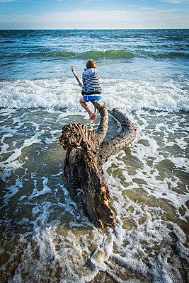 Baumstamm im Meer - p829m972346 von Régis Domergue