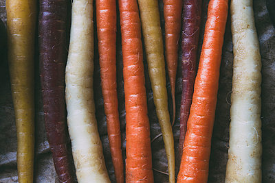 Mulitcolored Carrots - p1262m1119993 by Maryanne Gobble