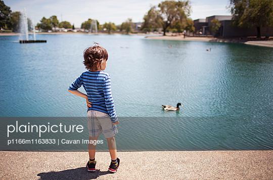 p1166m1163833 von Cavan Images