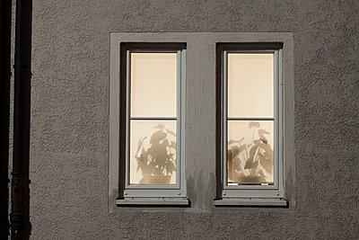 Window at night - p1149m1057050 by Yvonne Röder
