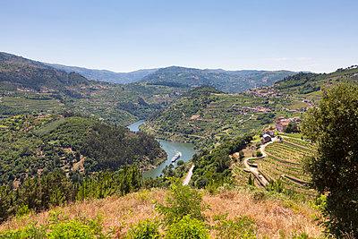 Douro-Tal, Portugal - p1208m1051711 von Wisckow