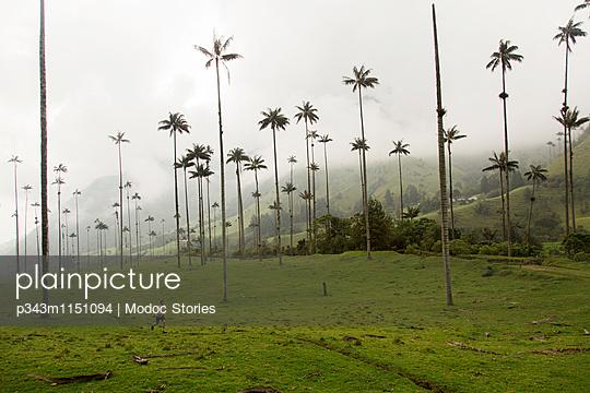 p343m1151094 von Modoc Stories