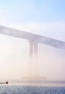 San Diego Coronado Bay Bridge - p1436m1588848 by Joseph S. Giacalone