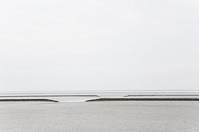 Wattenmeer - p1357m1207541 von Amadeus Waldner