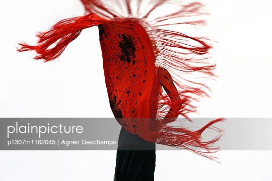 p1307m1162045 von Agnès Deschamps