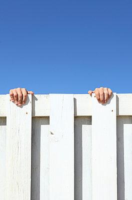 Curious neighbor - p045m899654 by Jasmin Sander