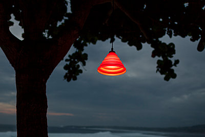Red lamp on tree - p1324m1441291 by Michael Hopf
