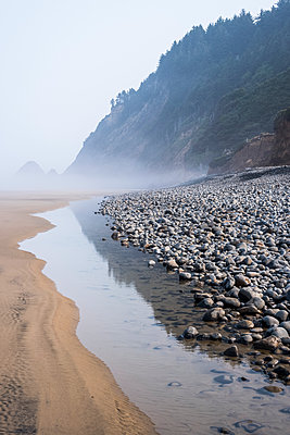 Low tide and fog are found at Arch Cape Beach; Arch Cape, Oregon, United States of America - p442m2039287 by Robert L. Potts