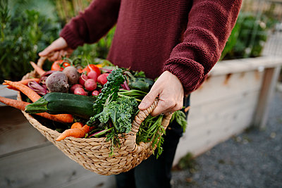 Close up woman holding basket of fresh harvested vegetables in garden - p1192m2130150 by Hero Images