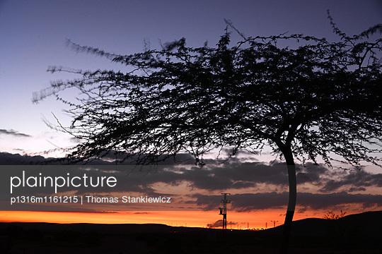 Sonnenuntergang bei Mamshit in der Wüste Negev, Süd-Israel, Israel - p1316m1161215 von Thomas Stankiewicz