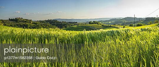 p1377m1582358 von Guido Cozzi