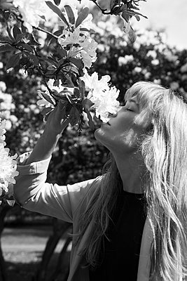 Woman smelling flower - p1095m1161860 by nika