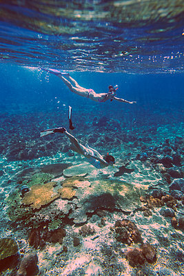 Snorkeling in Indian ocean - p1108m1118844 by trubavin