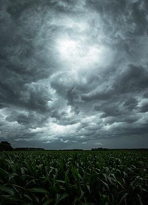 Dark storm clouds over a field - p1515m2182101 by Daniel K.B. Schmidt