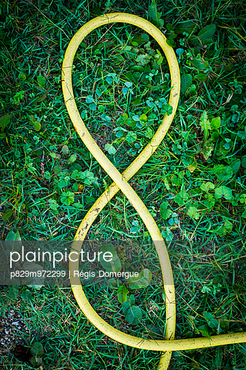Garden hose - p829m972299 by Régis Domergue