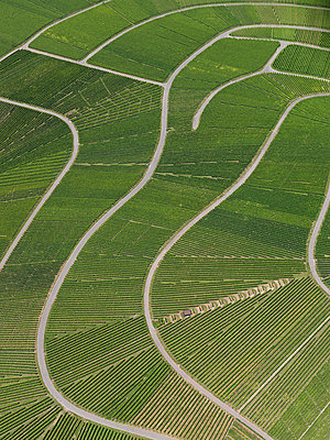 Aerial view of agricultural landscape, Hohenheim, Stuttgart, Baden-Wuerttemberg, Germany - p301m1406260 by Stephan Zirwes