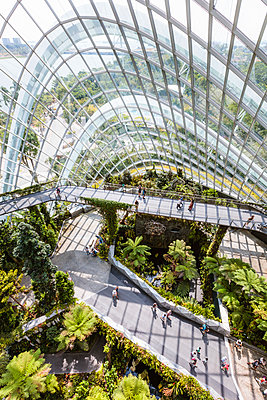 Cloud forest, Gardens by the Bay, Singapore - p651m2062173 by Matteo Colombo photography