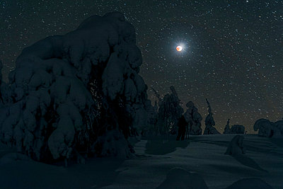 Nightly snowfall at full moon - p1241m2100357 by Topi Ylä-Mononen