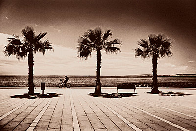 Bicyclist and Palm Trees Along Beach Promenade, Mallorca, Spain - p6943686 by Måns Berg