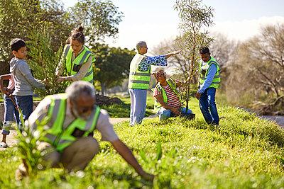 Volunteers planting trees in sunny park - p1023m2067040 by Trevor Adeline