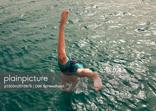 Dive - p1503m2015875 by Deb Schwedhelm