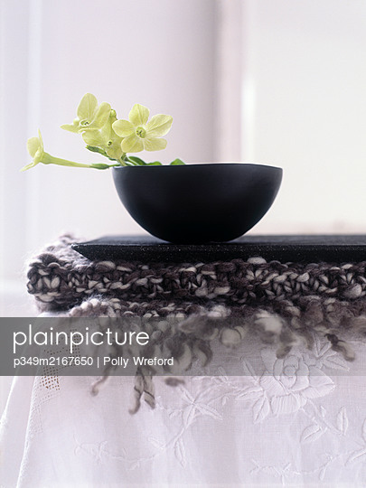 Yellow orchid in bowl with wool and lace - p349m2167650 by Polly Wreford