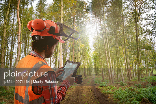 Digital composite of forest worker using 5G tablet to survey trees in sustainable forest - p924m2271164 by Monty Rakusen