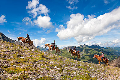 Pferdetrekking - p1205m1515892 von Toni Anzenberger