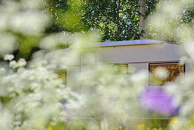 Wohnwagen durch eine Blumenwiese gesehen - p235m1538348 von KuS