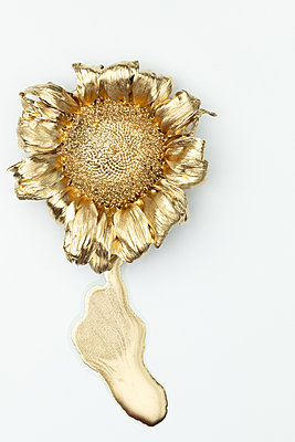 Sunflower painted in gold - p919m2195639 by Beowulf Sheehan