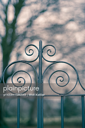 Ornamental wrought iron gate with trees blurred in the background. - p1433m1586549 by Wolf Kettler