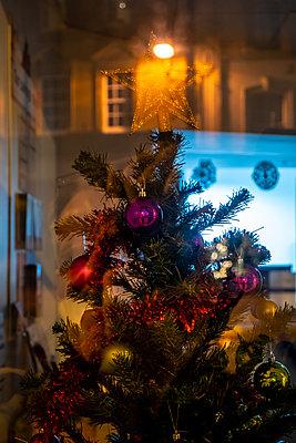 Weihnachtsbaum in einem Schaufenster - p1057m2044760 von Stephen Shepherd
