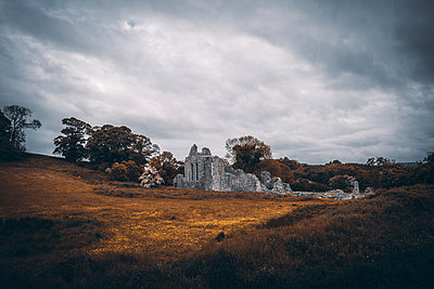 Ruined monastery, Inch abbey, Northern Ireland - p1681m2283620 by Juan Alfonso Solis
