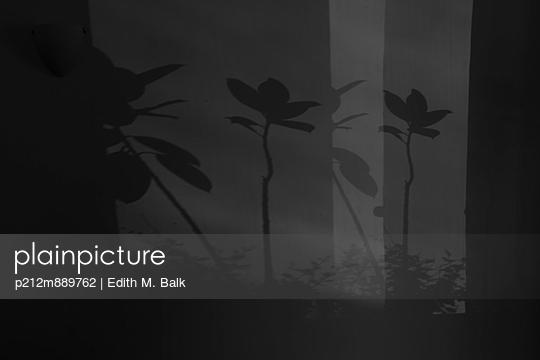 Schattenspiel - p212m889762 von Edith M. Balk