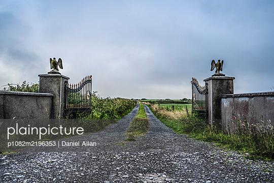 Eagle sculpture on gate pillars - p1082m2196353 by Daniel Allan