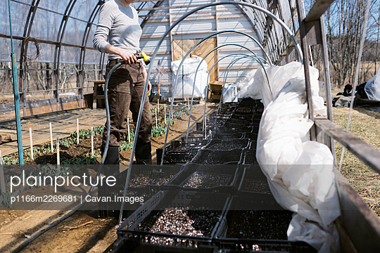 A young female farmer watering her seedlings in the greenhouse - p1166m2269681 by Cavan Images
